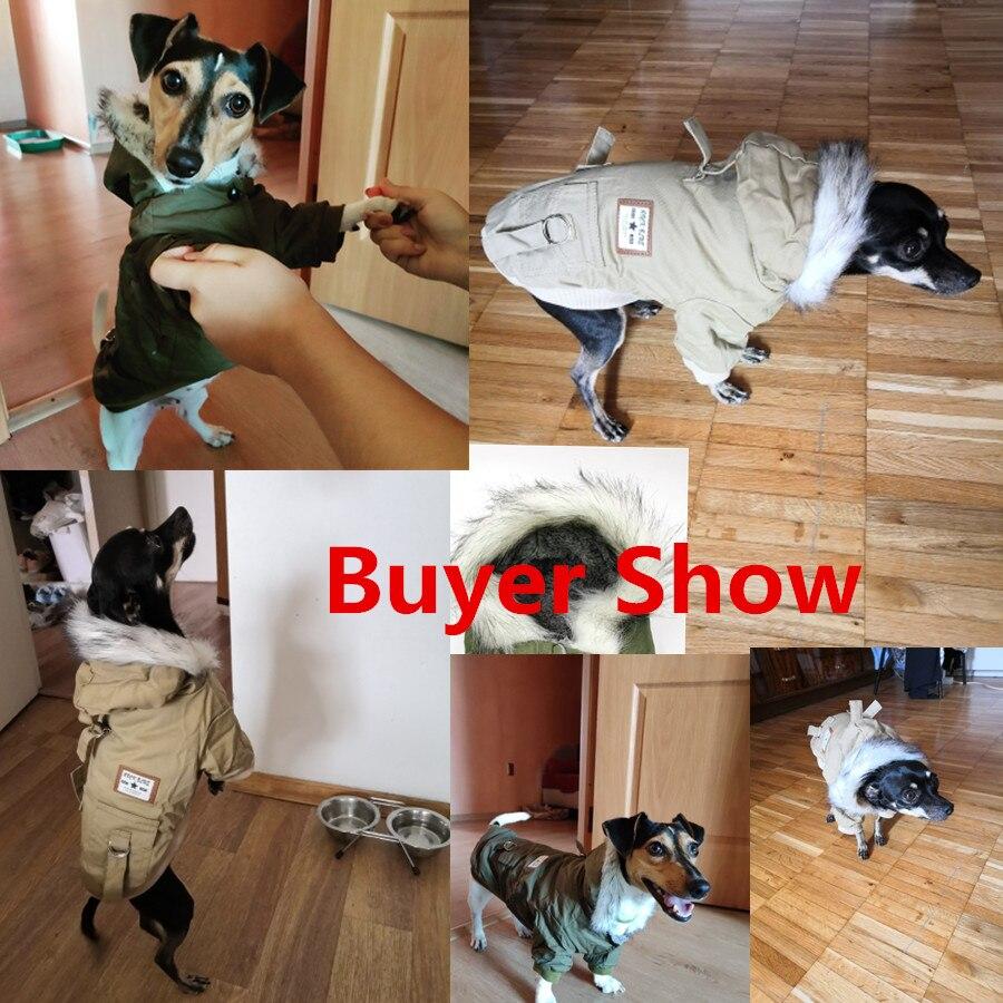 Высококачественная одежда для домашних животных, одежда для собак, хлопковая зимняя утепленная куртка, пальто, костюмы, толстовки, одежда для маленьких щенков, одежда для кошек, Новинка-4