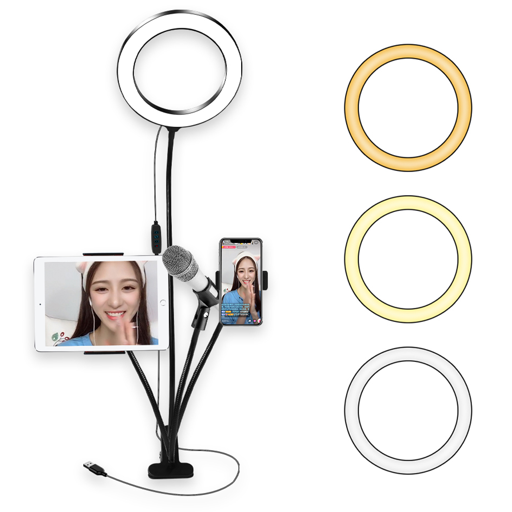 8 Inch Fill Light Led Ring Light Lamp Rim Of Light For Live Tik Tok Tiktok Youtube Selfie Ringlight With Phone Stand USB Charger