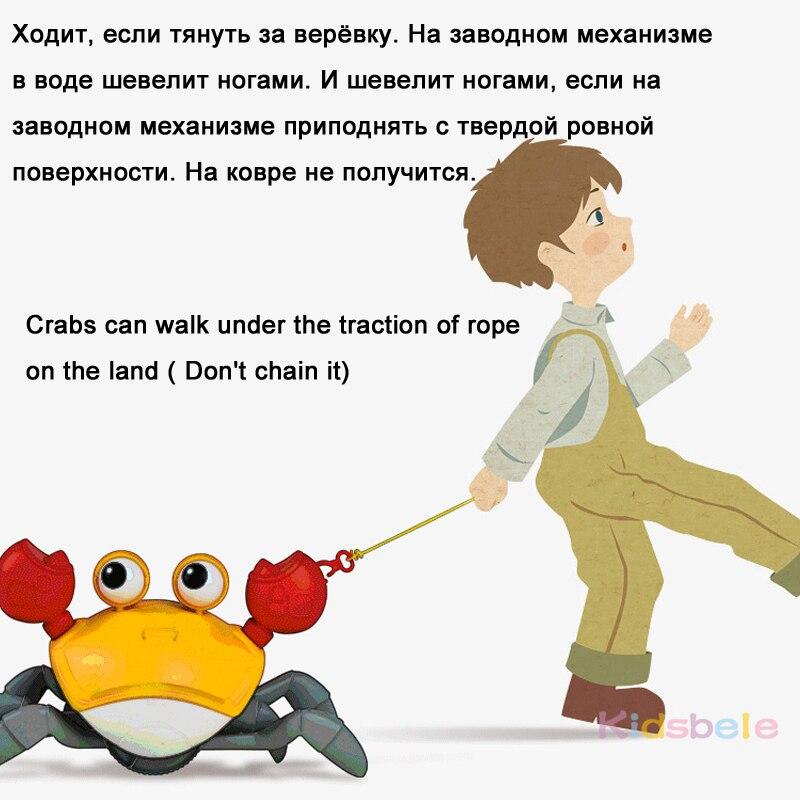 [TOYA543]上链螃蟹玩具_04