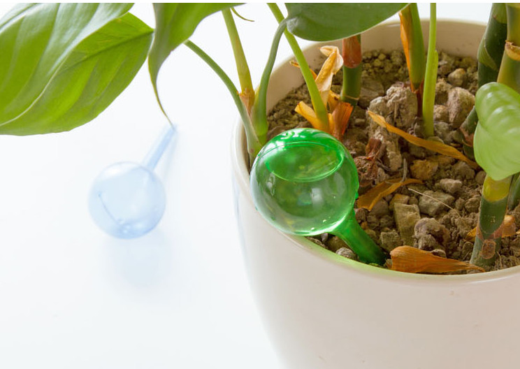 Convenient Flower Automatic Watering Device Houseplant Plant Pot Bulb Globe Garden House Waterer Water Cans title=