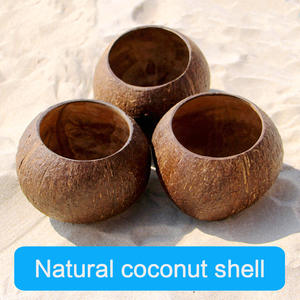 Wooden Bowl Coconut-Bowl-Set Salad Dessert-Shop Smooth Naturally-Processed Container