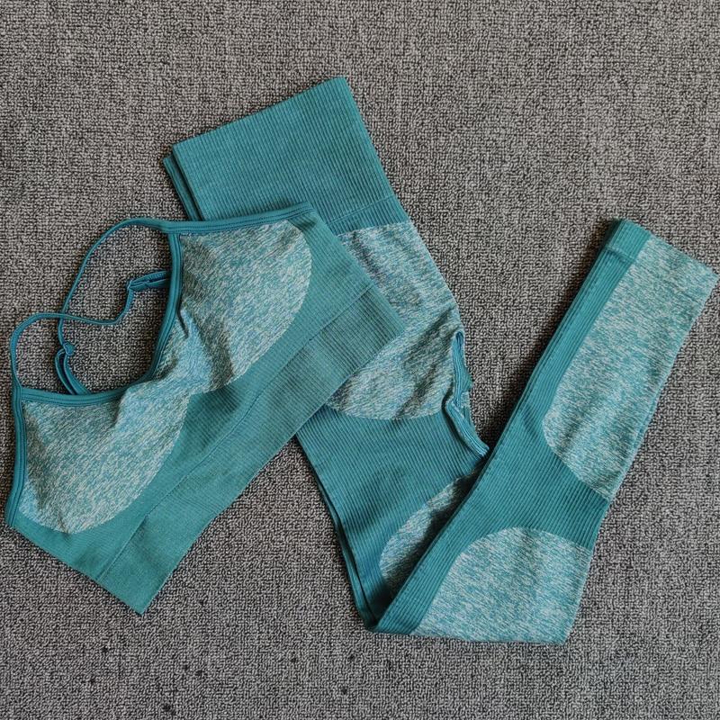 Seamless Yoga Set Fitness Clothing Sportswear High Waist Women Gym Leggings Tights Padded Push-up Sports Bra 2 Pcs Sports Suits