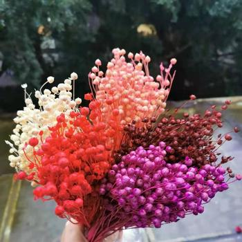 60g/40-45cm,Natural Dried Jumble-beads,Mini display Flower Beauty and the Beast Rose for Wedding Party Ramadan Home Decoration image