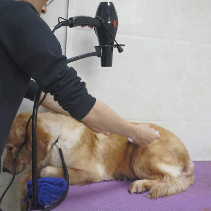 Duplo-uso pet secador de cabelo suporte telescópico