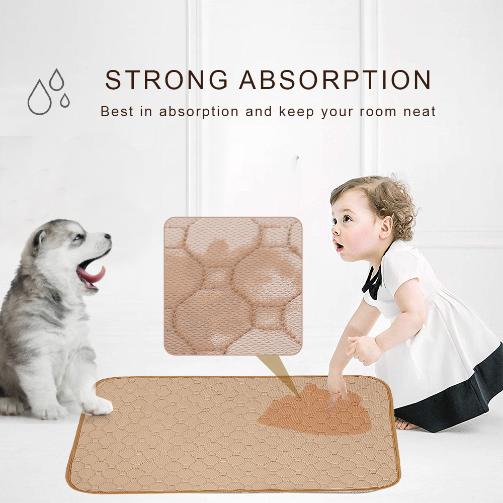 Pad Training Washable Dog Diaper Urine