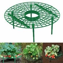 5Pcs/sets Strawberry Stand Frame Holder Planting Rack Fruit Growing Support Plant Climbing Vine Flower Pillar Bracket Gardening недорого