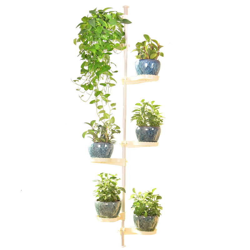 Frame Of Indomitable Spirit Multi-storey Indoor Balcony A Living Room Green Radish Meat Flowerpot Frame Windowsill Flower Airs
