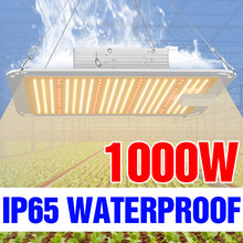 Le piante di coltura idroponica della fito 220V coltivano la lampada ha condotto la serra dell'interno della scatola crescente 1000W 20000W 4000W di spettro completo
