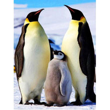 5d diy Алмазная картина Пингвин семья полный квадратный Круглый