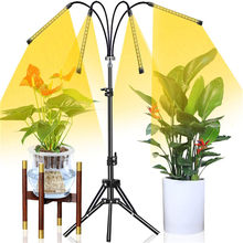 USB Plant Grow Light With Stand Full Spectrum Fitolampy Timer Dimmable For Indoor Greenhouse Flower Seedling Grow Phyto Lamp