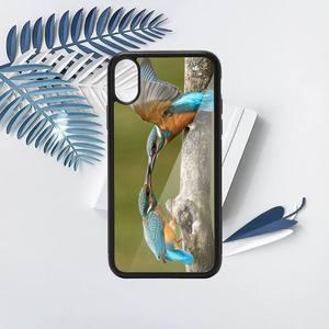 Image 4 - kingfisher Phone Case TPU For iPhone X XR XS 11 12 mini Pro MAX 6 6S 7 8 Plus SE 2020