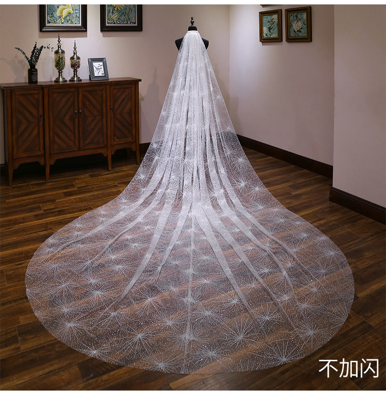 Bride Wedding Veil Wedding Long Section White Polaris Trailing Long Bride Wedding Veil Accessories TS264 - 3