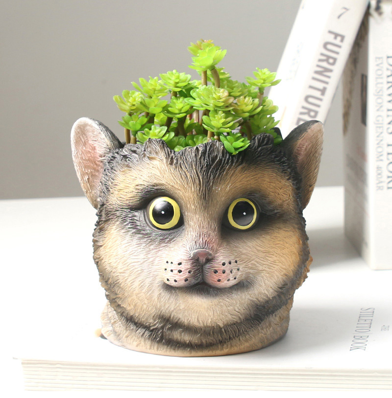 Strongwell Nordic Cat Face Flower Pot Container Cat Head Figurine Garden Planter Pot Desktop Home Decoration Birthday Gift Cute Flower Pots Planters Aliexpress
