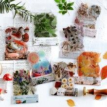 Lote de pegatinas de papelería Kawaii, planificador diario de plantas, pegatinas decorativas para móviles, pegatinas artesanales para Scrapbooking, 40 hojas/1 lote