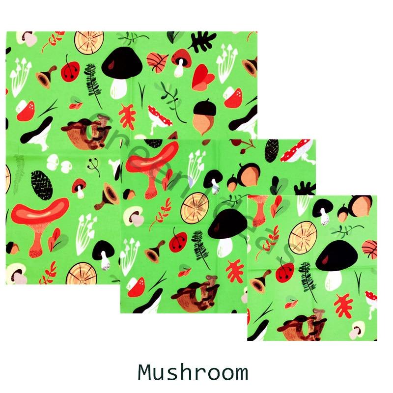 mushroom y_副本