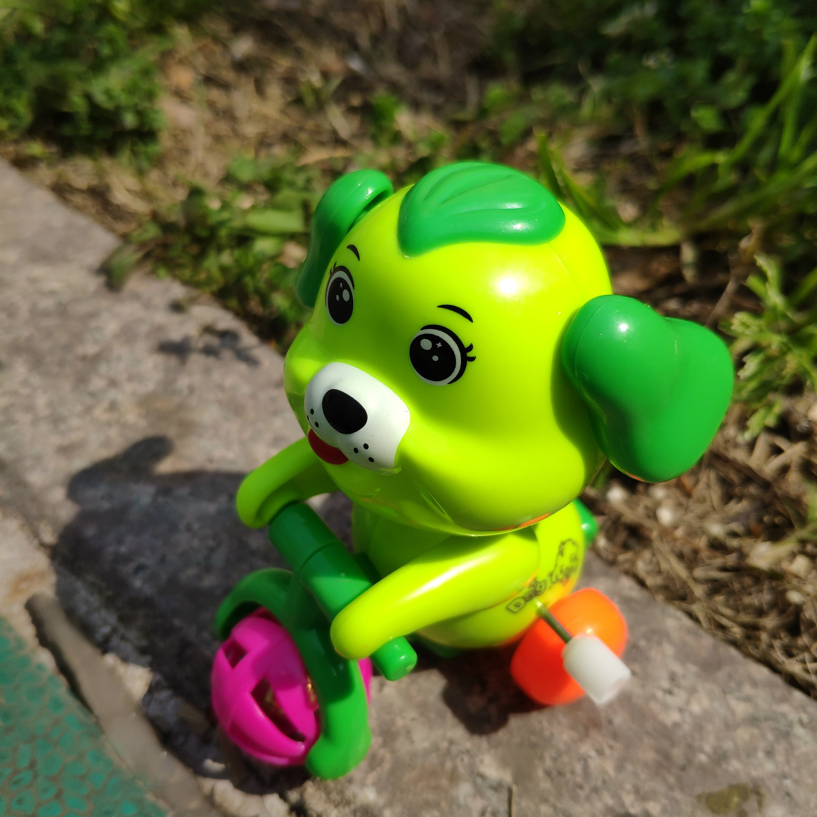 Winding Bicycle Puppy Spring Small Toy Cute Funny Stall CHILDREN'S Toy Hot Selling