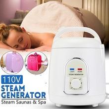 Sauna Generator For Sauna Steam Generator Fumigation Machine Home Steamer Therapy Suitable For Casks Kitchen Heating 110V / 220V