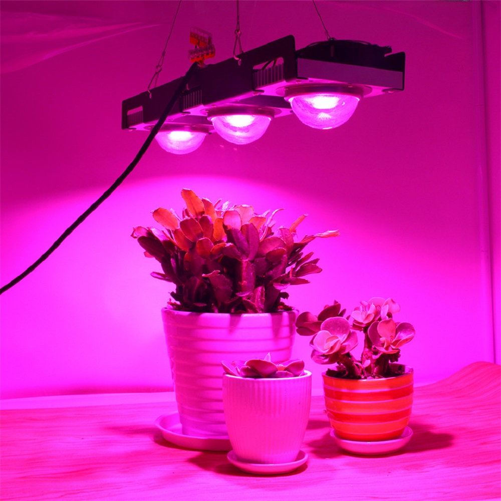 LED Grow Light Full Spectrum 100W 200W 300W COB LED Plant Grow Lamp For Indoor Plants Flowers Greenhouses Hydroponics Grow Tent