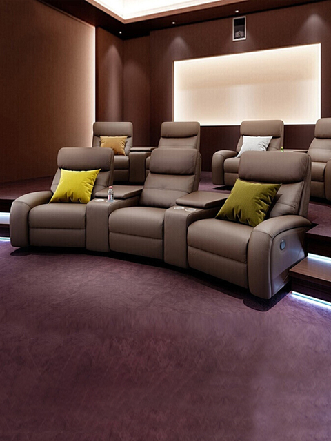 Leather Theater Dual Recliners  3