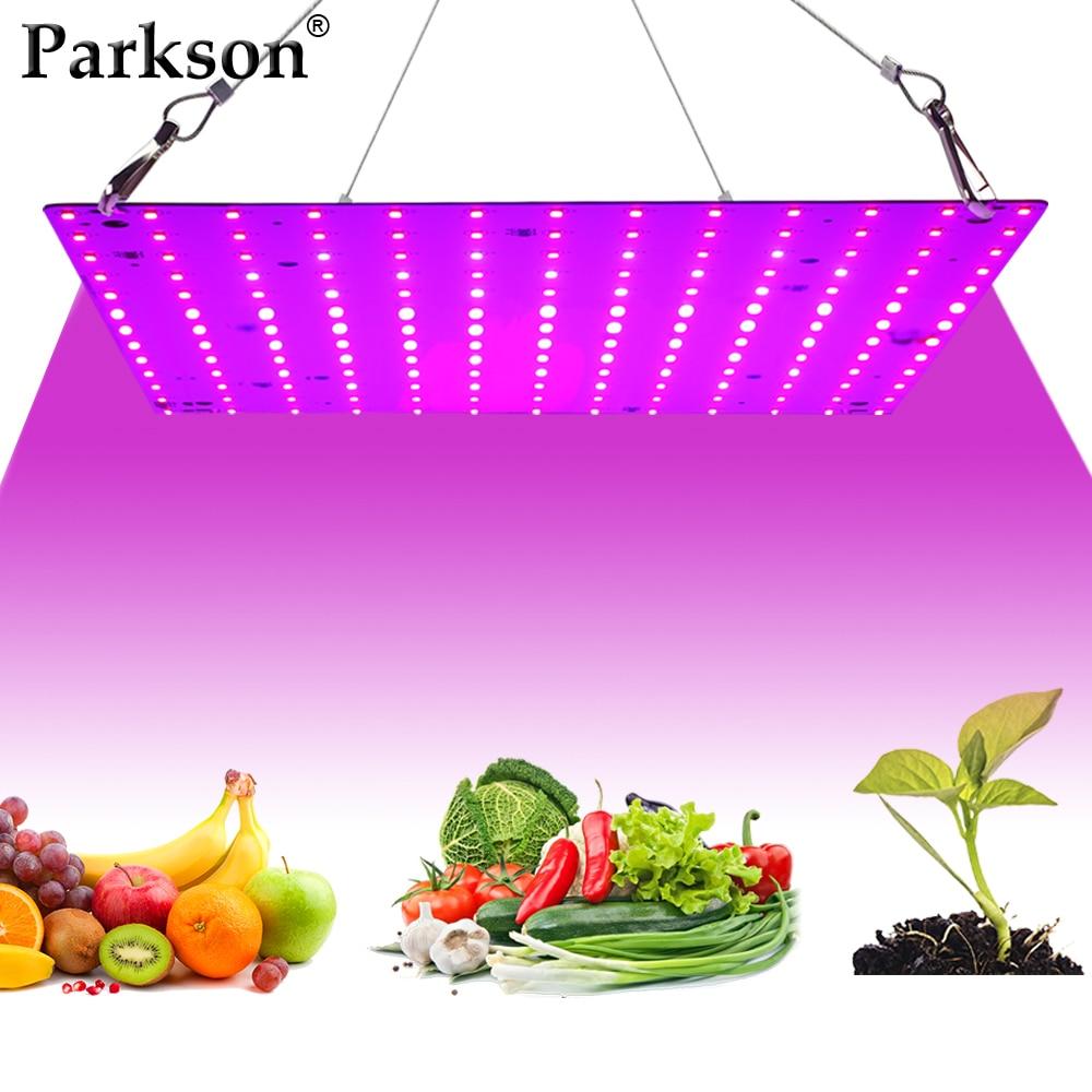 LED Grow Light AC 85-265V 25W 50W Phytolamp 2835 Leds Chip EU Plug Full Spectrum Growth Lamp Indoor Plant Lighting