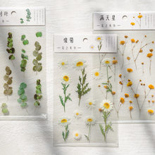 1pc Natural Daisy Clover Japanese Words Stickers Transparent PET Flowers Leaves Plants Decoration Sticker DIY Handbook Stickers