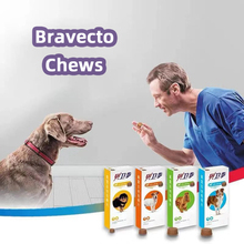 Bravecto Chews for Dogs, 44-88 lbs, 1 treatment In stock