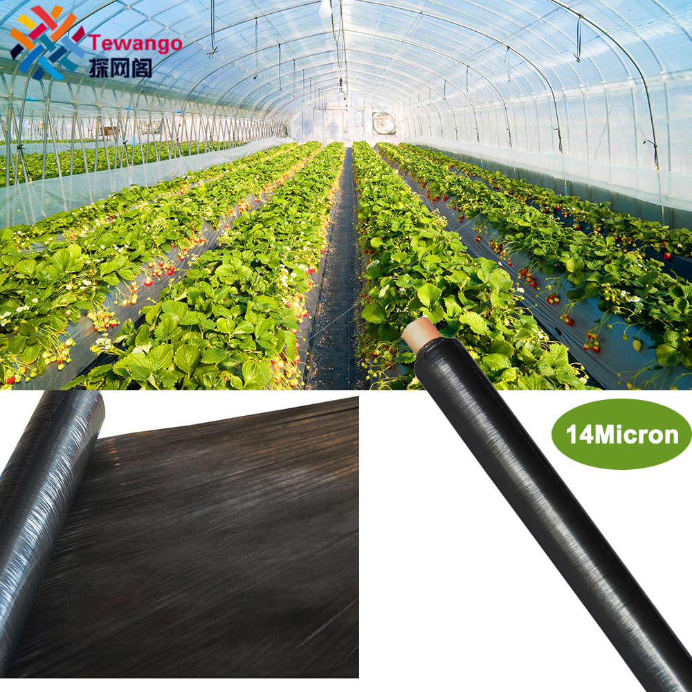 Tewango 14Micron Agricultural Black Plastic Mulching Film Strawberry Tomato Cover Garden Weeds Control Biodegradable Film
