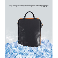 2 Bottle Wine Carrier Tote Travel Wine Bag Portable Wine Cooler Carrying Bag For Travel Picnic