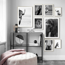 Canvas Painting Animal Wall…