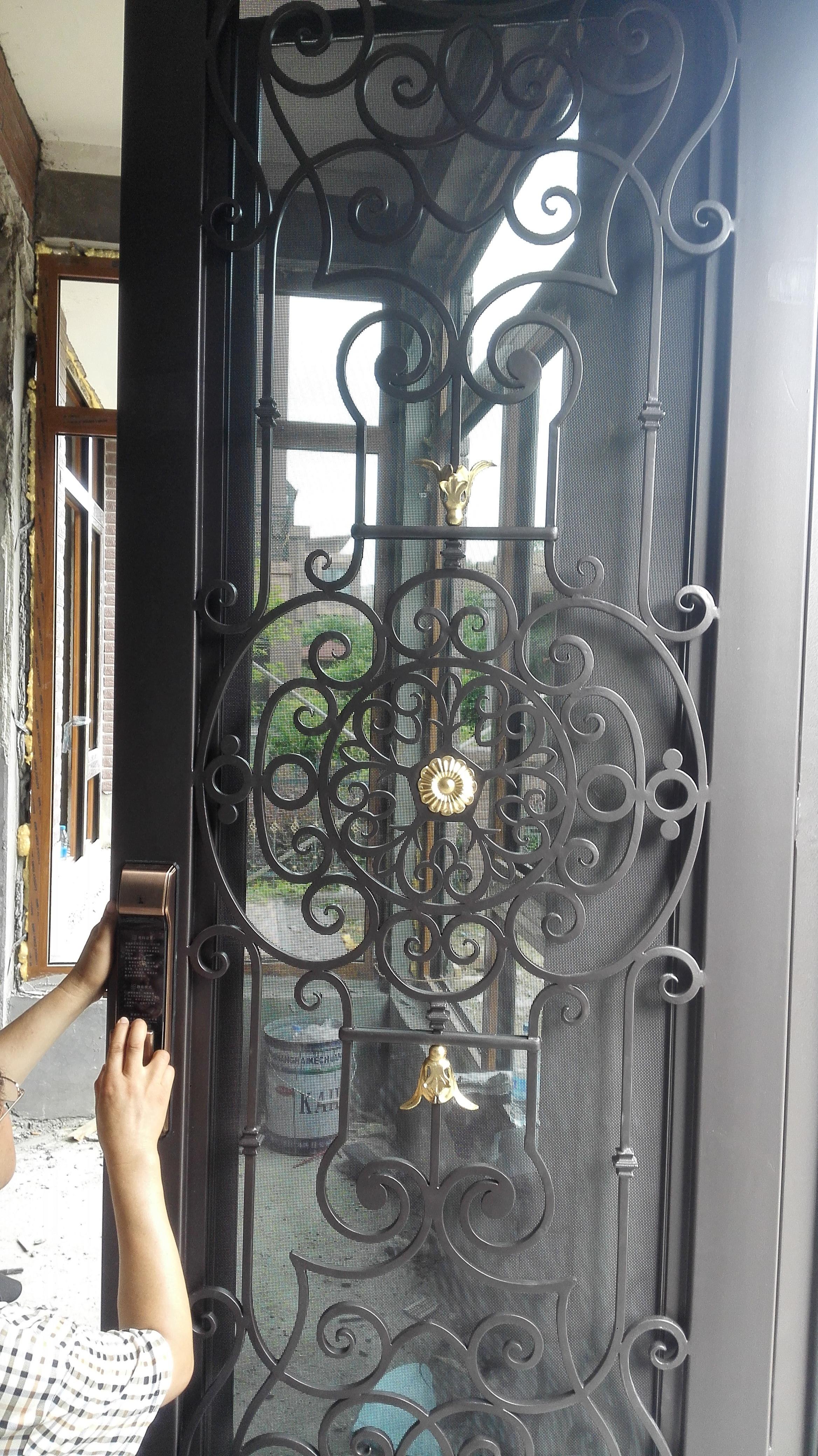 Shanghai Hench Brand China Factory 100% Custom Made Sale Australia Iron Storm Door