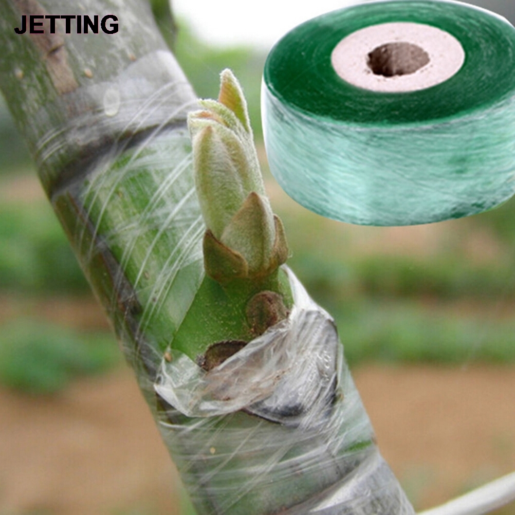 2CM X 100M / 1 Roll Grafting Tape Garden Tools Fruit Tree Secateurs Engraft Branch Gardening Bind Belt PVC Tie Tape