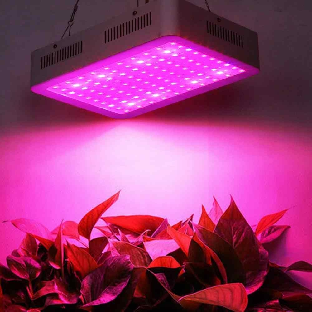 600W 60LED растительный свет, полная лампа полного спектра для внутренней гидропонной установки растительного садоводства, промышленного рассады
