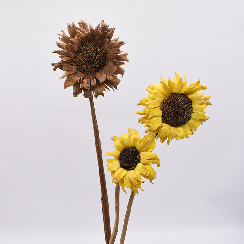Sunflower Model Dried Flower Bouquet Domestic Ornaments Artificial Flower Hand-made Photographic Prop Manufacturers Direct Selli