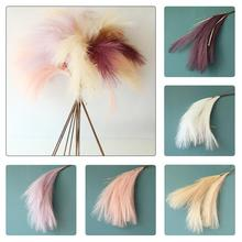 Phragmites Natural Dried Small Pampas Grass Phragmites Artificial Plants Wedding Party Flower Bunch For Home Decor Fake Flowers 50pcs real dried small pampas grass wedding flower bunch natural plants home decor dried flowers phragmites flower ornamental