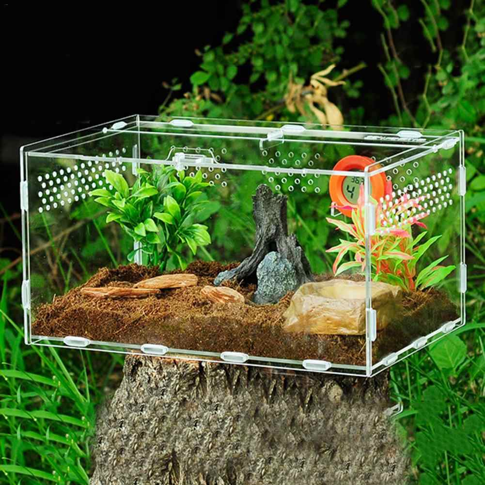 Acrylic Reptile Feeding Box Insect Lizard Spider Breeding Cage Hatching  Container All round Transparent Feeding Box|Terrariums| - AliExpress