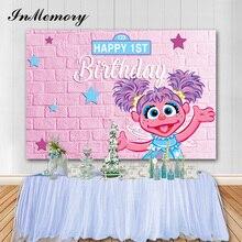 Inmemory Roze Muur Meisje Verjaardag Achtergronden Sesamstraat Party Fotografische Achtergrond Baby Shower Foto Vinyl Props Photocall