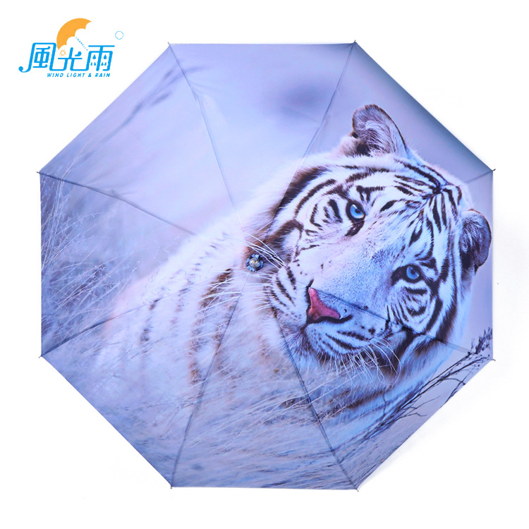 Umbrella Lolg Pattern Image Customizable Advertisement Silver Colloid Parasol Illustration Folding Umbrella Manufacturers Wholes