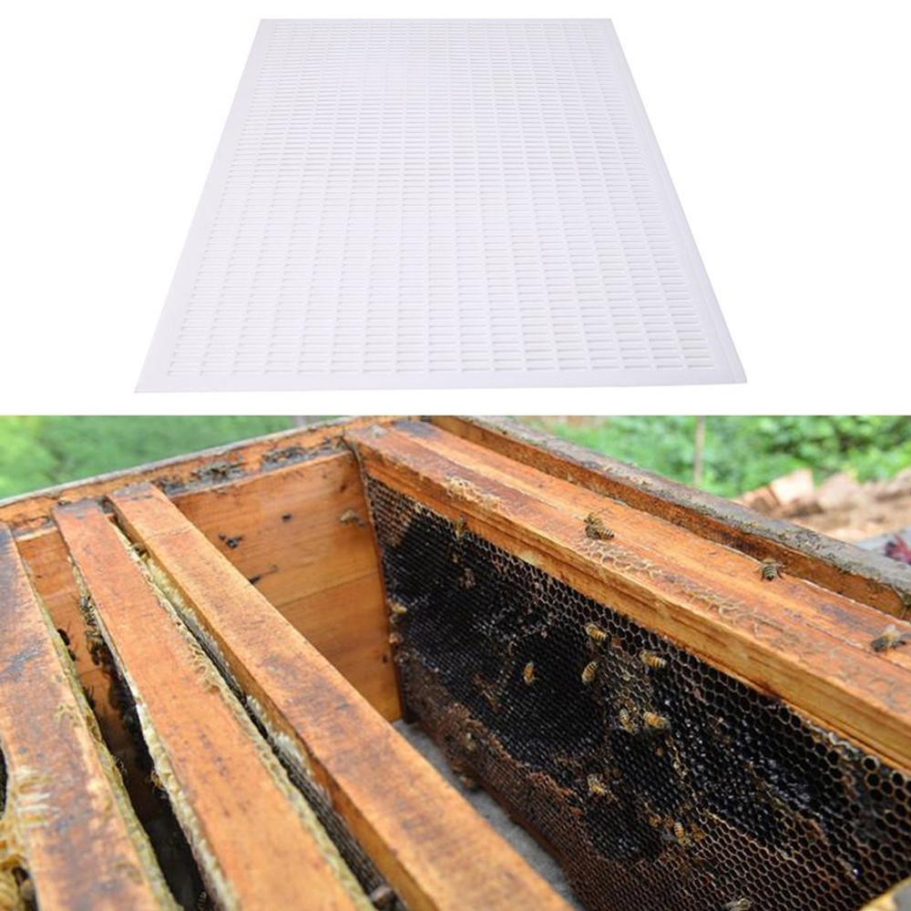 1Pcs Beekeeping Board Beekeeper Bee Queen Plastic White Excluder Trapping Grid Net Kits Equipment