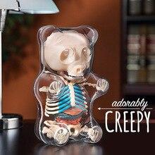 4d duży niedźwiedź przezroczysta perspektywa anatomia zwierząt szkielet kości Puzzle zabawka do montażu dla dzieci