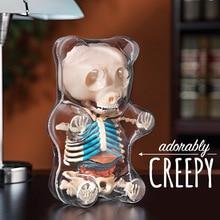 4d 빅 베어 투명한 관점 동물 해부학 해골 뼈 퍼즐 어린이를위한 장난감 조립