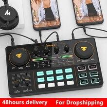 Beruf Einstellbare Volumen Audio USB Instrument Wiederaufladbare Mikrofon Mischer Verstärker Mit Soundkarte Für Live-übertragung