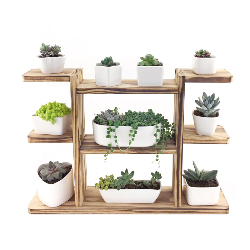 Solid Wood Meaty Flower Airs Balcony Indoor Office Desktop Float Windowsill Mini Multi-storey Botany Small Flower Rack