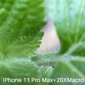 Image 4 - Ulanzi U 렌즈 5 in 1 전화 렌즈 케이스 키트 iPhone 11 Pro 최대 20X 슈퍼 매크로 렌즈 CPL 어안 망원 렌즈 iPhone 11 Pro