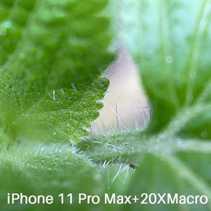 Image 4 - Ulanzi U Lens 5 in 1 telefon Lens çantası seti iPhone 11 Pro Max 20X süper makro Lens CPL balıkgözü telefoto Lens iPhone 11 Pro