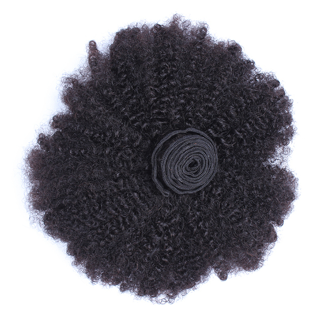 Mongolian Afro Kinky Curly Bundles Human Hair Bundles With Closure 100% Human Hair Weave Extensions 4B 4C Virgin Hair EverBeauty 5