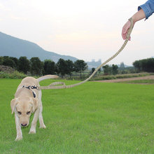Эластичный нейлоновый поводок для собак быстросъемный с двумя