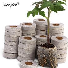 300 шт 30 мм Jiffy торф гранулы блоки грунта под рассаду в блоках семян пусковые вилки паллет Профессиональный 50 шт-упаковка в горячей продаже
