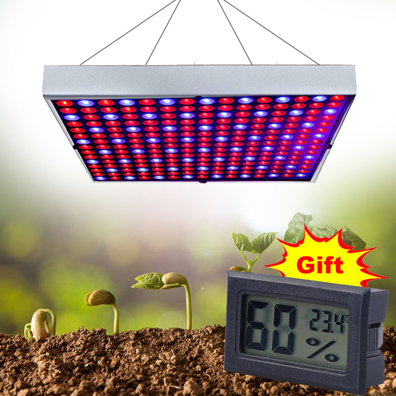 1000W Led Grow Light Full Spectrum Lamp For Plants Phyto Lamp Seedlings Germination Growth Lamp With Gift Thermometer Hygrometer