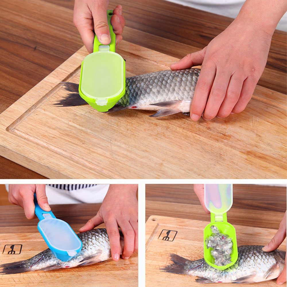 New Practical Fish Scale Remover Scraper Cleaner Kitchen Tool Peeler 1 Pcs Scraping Fish Cleaning Tool Lid Kitchen Accessories|Seafood Tools|   - AliExpress
