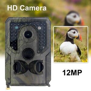 Surveillance 12MP1080P Wildlif